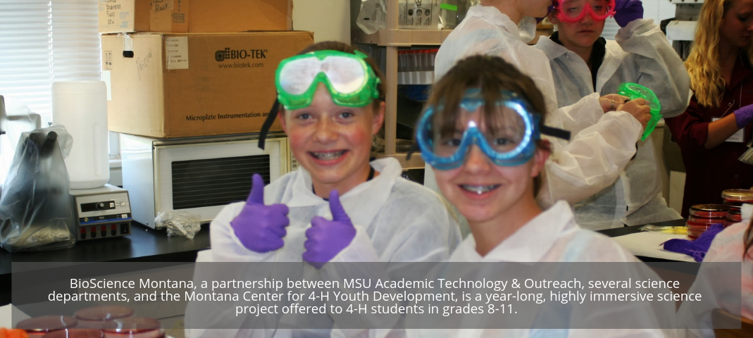 BioScience Montana, a partnership between MSU Academic Technology & Outreach, several science departments, and the Montana Center for 4-H Youth Development, is a year-long, highly immersive science project offered to 4-H students in grades 8-11.