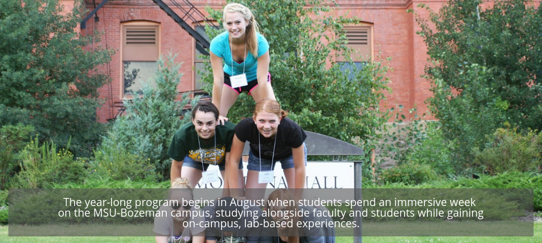 The year-long program begins in August when students spend an immersive week on the MSU-Bozeman campus, studying alongside faculty and students while gaining on-campus, lab-based experiences.